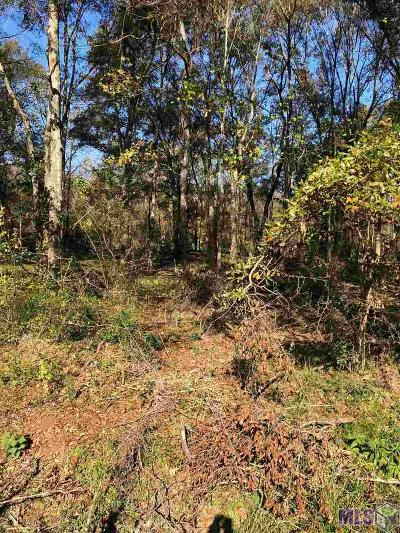 Prairieville Residential Lots & Land For Sale: Tbd Lot 2 Muddy Creek Rd