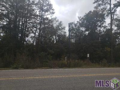 Prairieville Residential Lots & Land For Sale: Tbd Hwy 42
