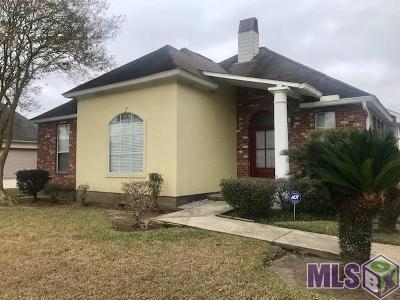 Springlake At Bluebonnet Highlands Single Family Home For Sale: 10446 Springpark Ave