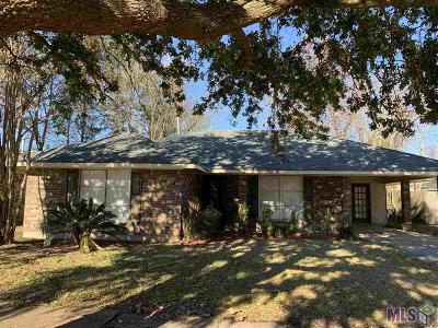 Baton Rouge Single Family Home For Sale: 13821 Chalmette Ave