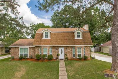 Shenandoah Estates Single Family Home For Sale: 16047 Hogenville Ave