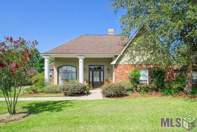 Prairieville Single Family Home For Sale: 17039 Abita Ave