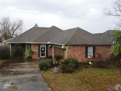 Baton Rouge Single Family Home For Sale: 17749 Lake Iris Ave