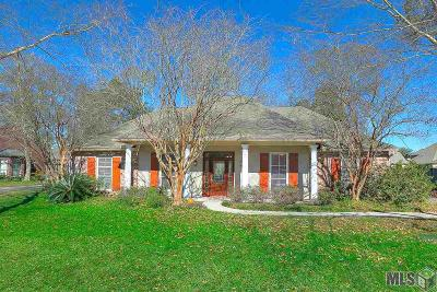 Prairieville Single Family Home For Sale: 37266 Prairie Dr