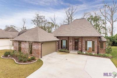 Prairieville Single Family Home For Sale: 40269 Kapelle Ave
