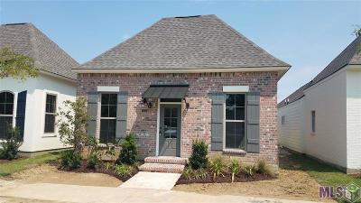 Central Single Family Home For Sale: Lot 47 Finn Way