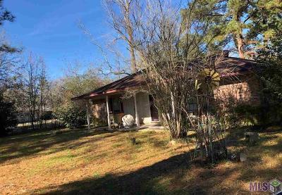 Denham Springs Single Family Home For Sale: 30656 Old River Rd