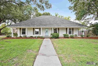 Baton Rouge Single Family Home For Sale: 16223 Confederate Ave
