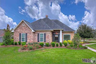 Denham Springs Single Family Home For Sale: 30596 South Pass Dr