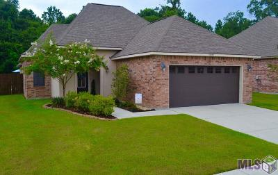 Prairieville Single Family Home For Sale: 17079 Sills Dr