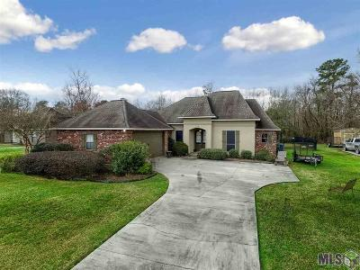 Prairieville Single Family Home For Sale: 17181 Trinidad Dr