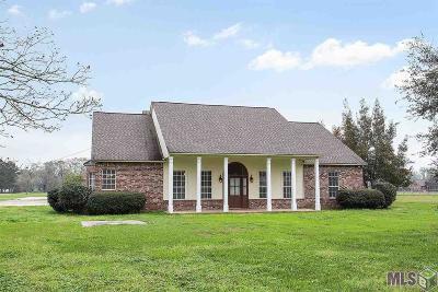 Prairieville Rental For Rent: 38021 Brown Rd