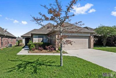 Baton Rouge Single Family Home For Sale: 3326 Southlake Ave #1