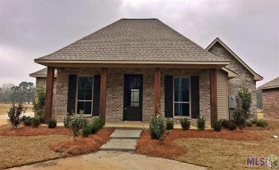 Denham Springs Single Family Home For Sale: 21521 La Hwy 1032