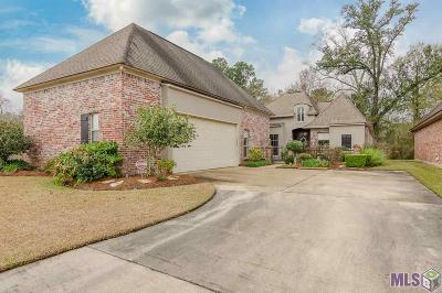 Baton Rouge Single Family Home For Sale: 3322 Shady View Dr