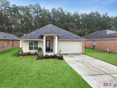 Denham Springs Single Family Home For Sale: 26092 Willow Wood St