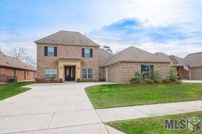 Prairieville Single Family Home For Sale: 18162 River Landing Dr