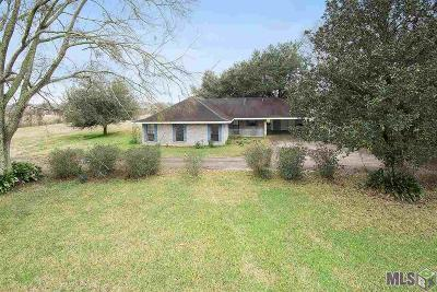 Prairieville Single Family Home For Sale: 42291 La Hwy 933