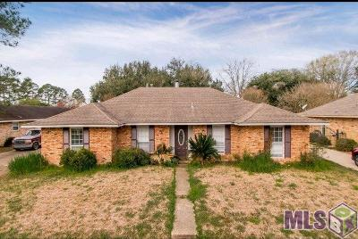 Baton Rouge Single Family Home For Sale: 14028 Katherine Ave