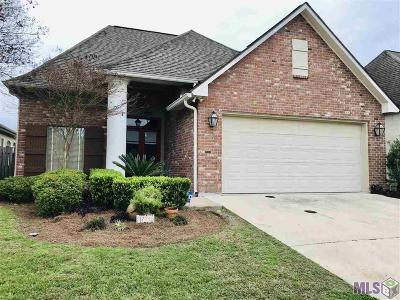Baton Rouge Single Family Home For Sale: 17713 Shady Creek Ave