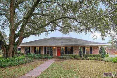 Baton Rouge Single Family Home For Sale: 1087 Chevelle Dr