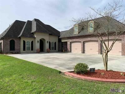 Walker Single Family Home For Sale: 12552 Three Lakes Dr