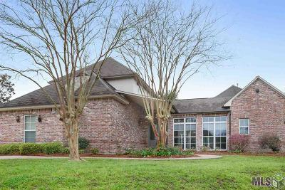 Baton Rouge Single Family Home For Sale: 11112 S Lakeside Oaks Ave