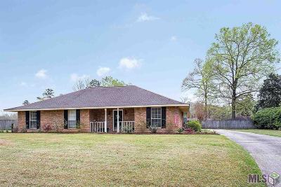 Central Single Family Home For Sale: 17598 Abundance Dr