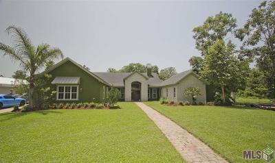 Livingston Parish Single Family Home For Sale: 20669 Swamp Dr