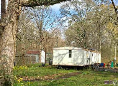 Denham Springs Single Family Home For Sale: 13471 Brown Rd