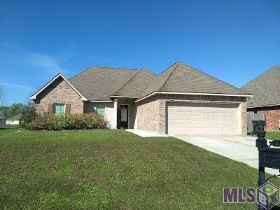 Prairieville Single Family Home For Sale: 16391 Keystone Blvd