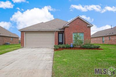 Prairieville Single Family Home For Sale: 17604 Hoods Ridge Dr