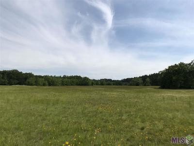 Residential Lots & Land For Sale: Tbd George White Rd