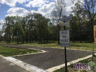 Baton Rouge Residential Lots & Land For Sale: Z-1-C-5 Hoo Shoo Too Rd