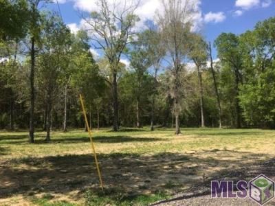 Baton Rouge Residential Lots & Land For Sale: Z-1-C-4 Hoo Shoo Too Rd