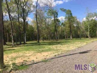 Baton Rouge Residential Lots & Land For Sale: Z-1-C-3 Hoo Shoo Too Rd