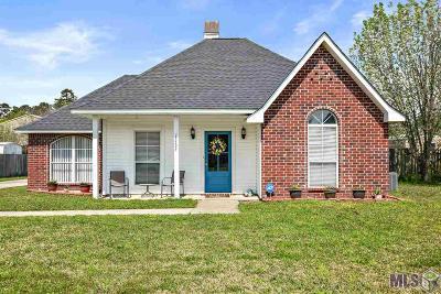 Walker Single Family Home For Sale: 13535 Prairie Ln