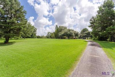 Ascension Parish Single Family Home For Sale: 14424 Bluff Rd