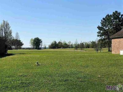 Plaquemine Residential Lots & Land For Sale: 58470 Island Dr