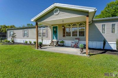 Gonzales Single Family Home Contingent: 14159 Adam Arceneaux Dr