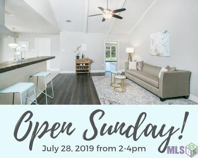 Shenandoah Estates Single Family Home For Sale: 16667 Appomattox Ave