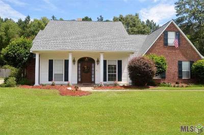 Walker Single Family Home For Sale: 14367 Mackenzy Way