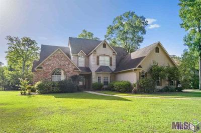 Baton Rouge Single Family Home For Sale: 5917 Riverbend Blvd