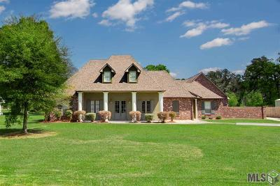 Walker Single Family Home For Sale: 32304 Briarwood Ln