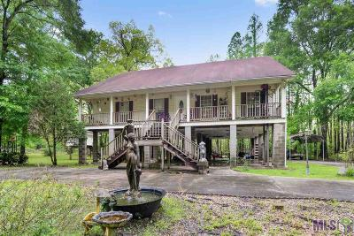 Prairieville Single Family Home For Sale: 18697 Manchac Point Rd