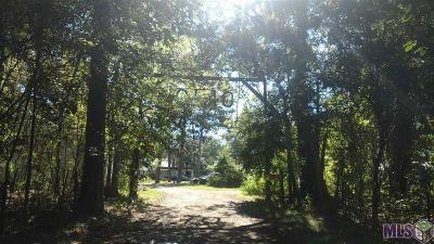 Livingston Parish Multi Family Home For Sale: 28750 Clio Landing Rd