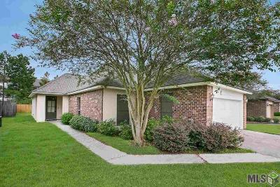 Baton Rouge Single Family Home For Sale: 3410 Northlake Ave