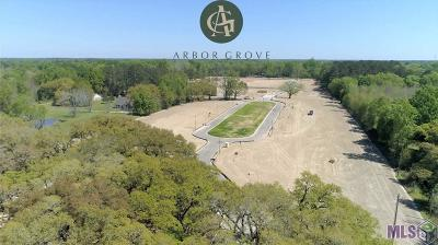 Central Residential Lots & Land For Sale: 12943 Solemn Oaks Ave