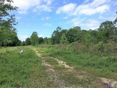 Gonzales Residential Lots & Land For Sale: D1-D5 S Hodgeson Rd