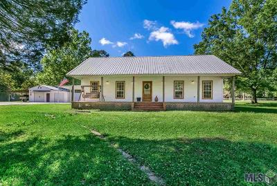 Walker Single Family Home For Sale: 14420 Salt Dome Rd
